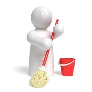 HARDWORKING INDIVIDUAL MALE HOUSE CLEANER