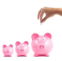 Money Coach -Tutor kids/adults about Money! Phone/video coaching
