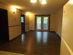 Large spacious open concept one bedroom and den