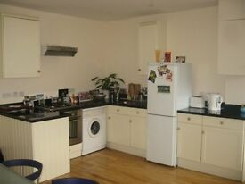 Earlsfield 1 bed up for grabs- great price for this flat!