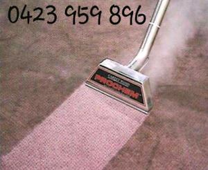 $89- 4 Rooms steam carpet cleaning O423959896