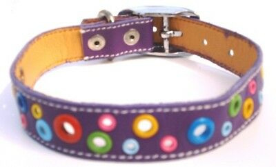 Cool Leather Dog Collar Loki Puppy Purple Loki Puppy Leather