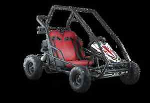 CROSSFIRE GO-KART 200 - 200CC BUGGY Jimboomba Logan Area Preview