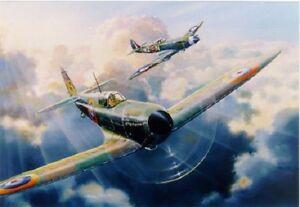 RAF-Supermarine-Spitfire-19-80-Squadrons-LTD-Edition-print-signed-artist