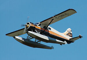 Super Beaver 600 HP bush plane De Havilland