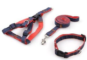 Red chest straps + Leash + Collar for medium size dog