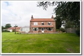 4 Bedroom detached house and stables on 5 acres.for sale. NO CHAIN