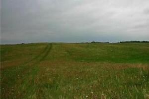 Acreage property with possible subdivision, 20 mins. to Red Deer