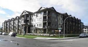 Lexington Court Apartments - 2 Bedroom Apartment for Rent...