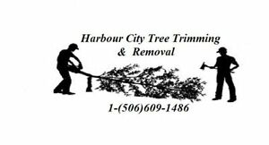 Harbour City Tree Trimming (1-506-609-1486)