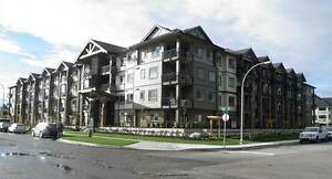 Lexington Court Apartments - 2 Bedroom Apartment for Rent...