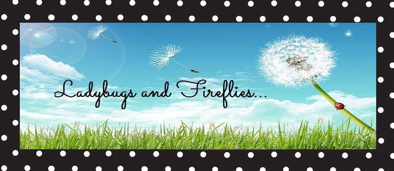 Ladybugs and Fireflies Boutique