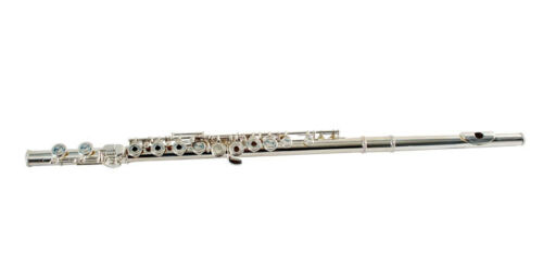 Flute Silver Open Hole ans Case