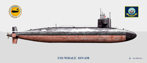 USS Whale SSN-638 Ship Print US Navy