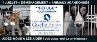 Vous désirez faire un don (Centre Animal Nouveau Départ)