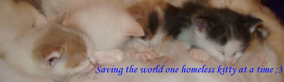 CompassionateCare