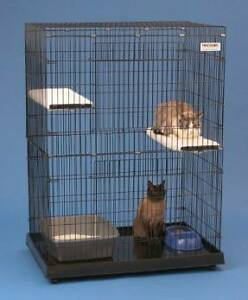 Looking for large cat cage