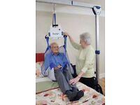 Disability hoist