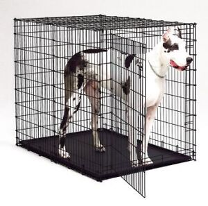 Great Dane Dog Kennel ( extra large)