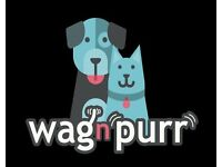 Wag n Purr Pet Services offer a professional dog walking and pet sitting service