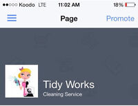 Tidy Works Professional Cleaning