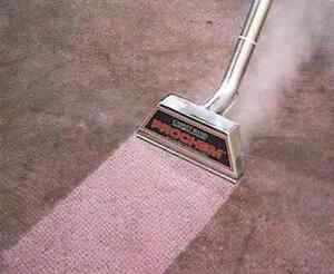 Professional carpet steam cleaning with  scrubbing O West Perth Perth City Area Preview