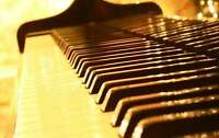 Summer piano and theory lessons - get ahead!