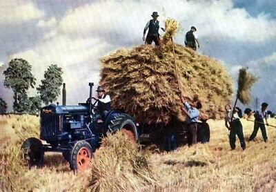 Fordson Major Vintage Artists Painting Lifting Hay Brochure Poster Advert A3