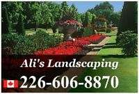 Affordable Landscaping Services!