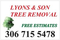 Lyons and Son Tree Removal