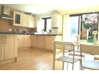 Amazing Five bedroom house to rent in Kingston (Albany mews), view to Thames river, KT2.