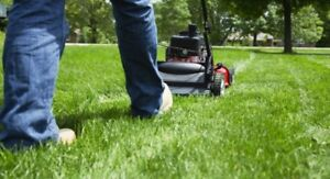L & S Lawn Services (Mississauga) as low as $30