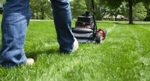 L & S Lawn Services - as low as $30
