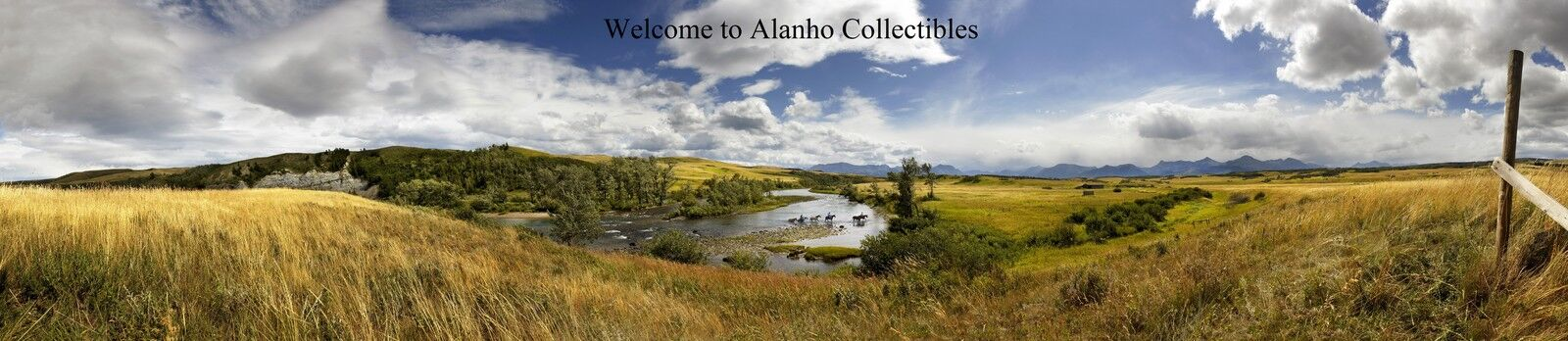 Alanho Collectibles in Boise Idaho