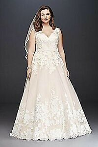 Plus sized wedding dress, veil and belt