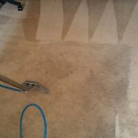 SYNDICATE CARPET & UPHOLSTERY STEAM CLEANING ON CHEAP RATES!!!