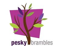 Pesky Brambles - Property clearance, maintainence, groundwork and landscaping services.