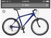looking fot a bike
