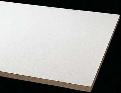 Armstrong 870b Clean Room Ceiling Tile 24 In W X 48 In L 8 Pk 0.55 Nrc