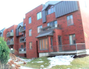 4 1/2 (2bdrms) condo for rent in the sud-west Montreal region