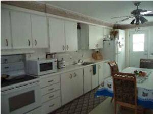 "Grand logement 5 1/2 - 24""x40"" Saguenay Saguenay-Lac-Saint-Jean image 1"