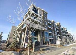 Windermere Waters * Upscale 2 bed 2 bath Condo