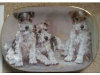 Canine Capers - Three's Company limited edition plate 23cm x 16cm with certificate