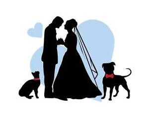 FIRST CLASS PET WEDDING ASSISTANTS Brisbane City Brisbane North West Preview