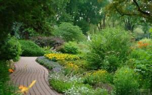Landscape for Curb Appeal - Book your project now!