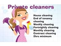 DOMESTIC CLEANING AND IRONING