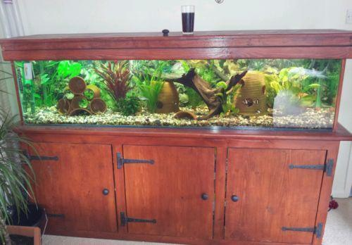 6ft fish tank ebay for Used fish tanks for sale many sizes