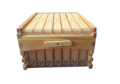 10 Stück Verzinkt Bienenflugloch Versteller Imker Gleitende Mäuseschutz 205mm