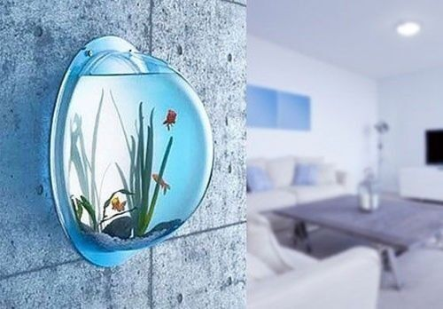 Wall mount fish bowl acrylic aquarium tank beta goldfish for Acrylic fish bowl