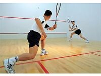Squash Players Wanted for Competitive Games